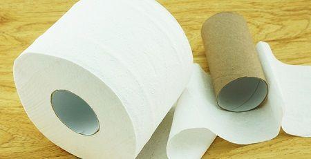 トイレットペーパーの芯を10年以上集め続けた結果wwwやばいことになってしまうwwwwww