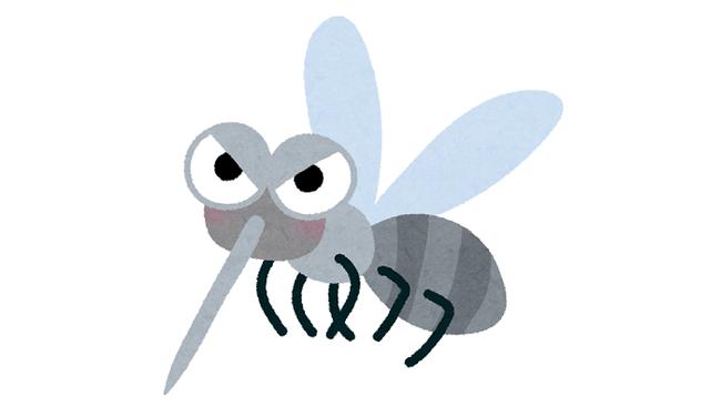 「蚊」は意外に頭が良いことが判明!お前ら次からは確実に一撃で仕留めろよ!
