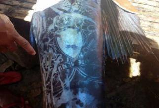 【画像】フィリピンで全身タトゥーで覆われた「謎の魚」が捕獲される
