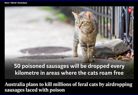 【ニュース】オーストラリア政府、毒入りソーセージを飛行機からバラマキ、野良猫200万匹を駆除へ