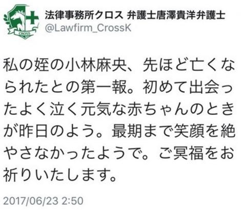 【痛いニュース】小林麻央が姪・なりすましアカウントが問題に