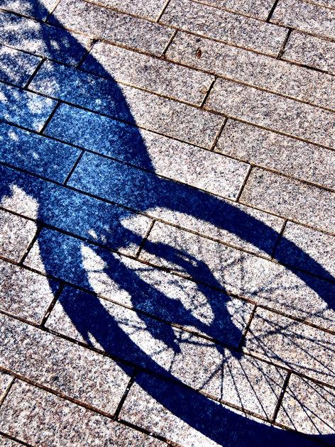 今年最後の営業サイクリングと横浜キャンドルナイト2015