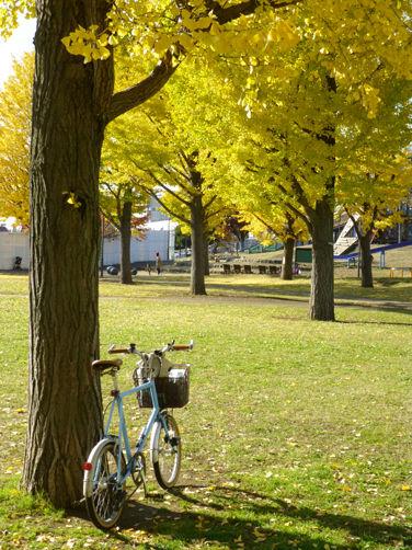 自転車人に続き、バイシクルナビも休刊……そして老舗自転車誌も(悲)