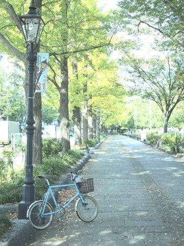 横浜・家系ラーメンと色付き始めた街♪