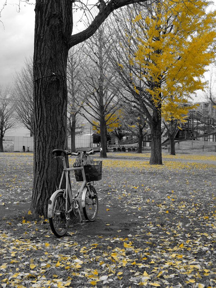 自転車ブログは放置でしょうか!?