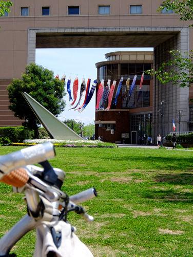 今日の集金サイクリング/横浜の街は新緑~♪