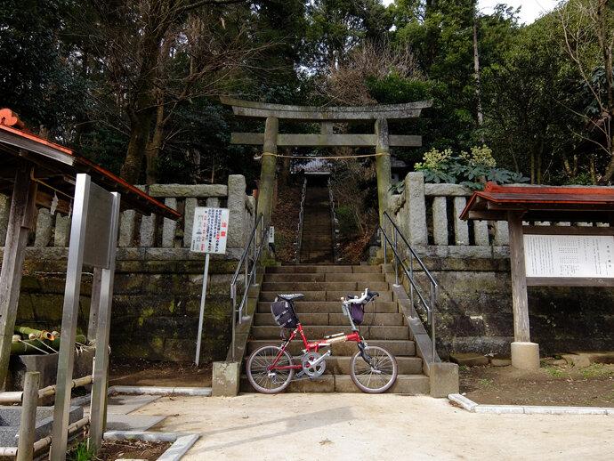 三浦半島サイクリング キャベツ畑へ!!
