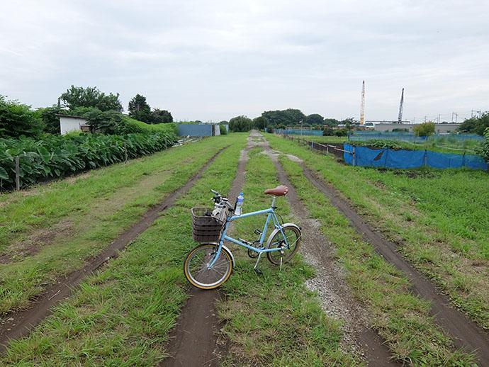 自転車で巡る水道みち