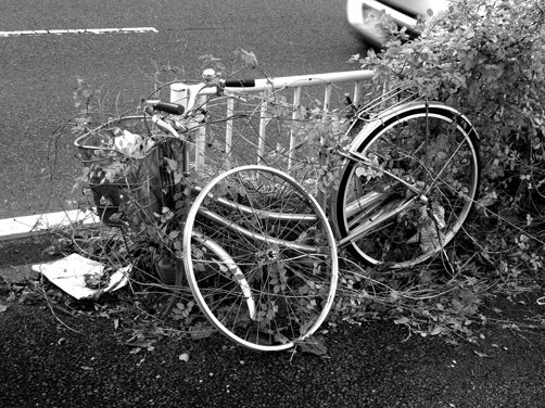 悪質自転車の罰則強化=またかよ(怒)!!!!