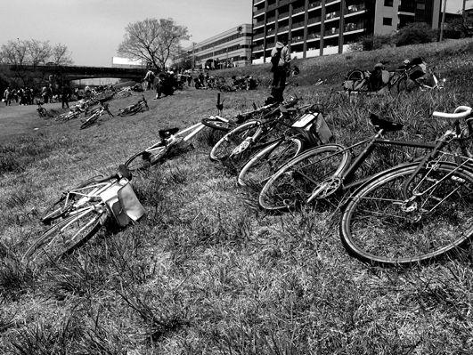 関戸橋フリマに見る昨今の自転車ブーム事情