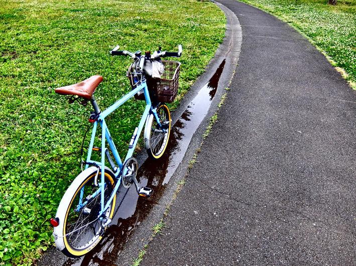 雨上がり、自転車散歩