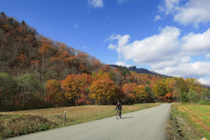 紅葉の山を走りたい♪