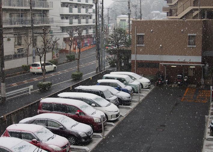 雪は積もりませんでした…