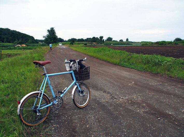 無情の雨サイクリングと歩きスマホ防止条例!!