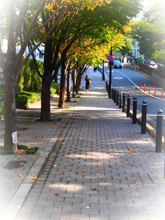 東京散歩/原宿・竹下通り~大久保・コリアタウン