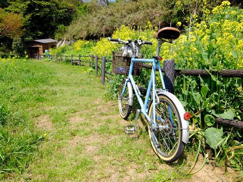 関戸橋自転車フリーマーケット 2016春