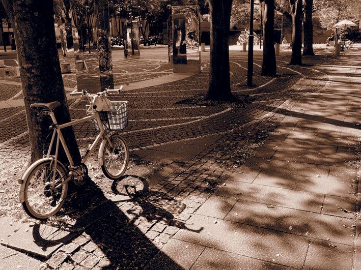 自転車の夢が良いんだけどなぁ…