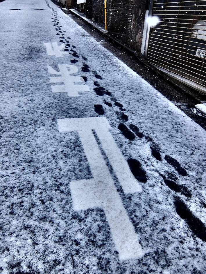 横浜は30年ぶりの積雪!!