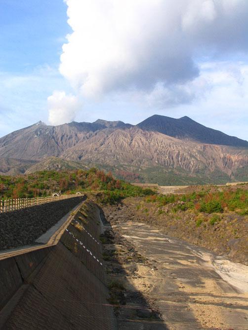 【日本縦断オートバイの旅】最終回 9日目/出水のツルと旅の終わり