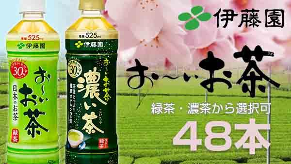 CoCo壱番屋監修 カレーまん 6個入×9袋(計54個)