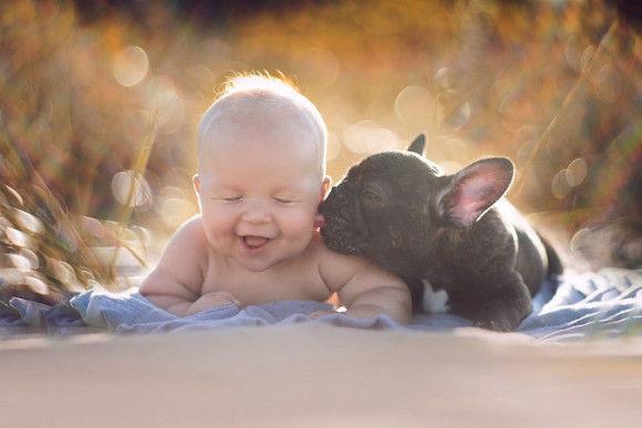 同じ日に生まれた犬と赤ちゃん1