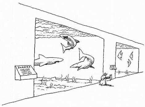 自殺ウサギ9