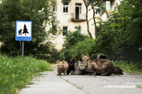 動物の標識がおもしろい2