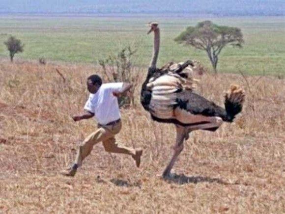 アフリカの日常光景26