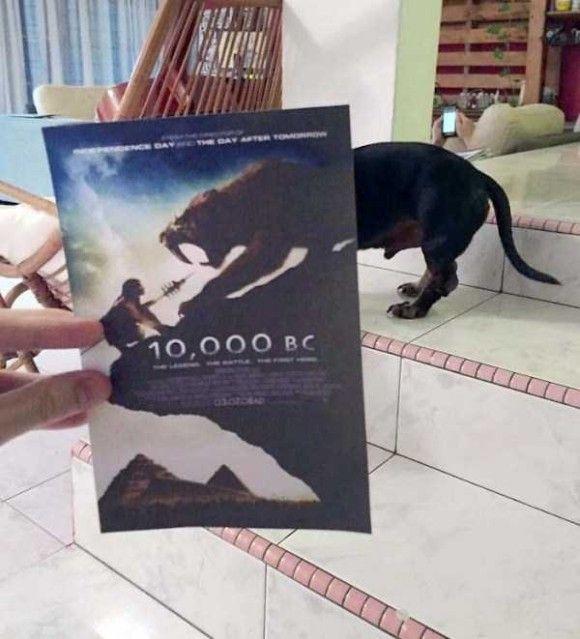 映画のポスターとシンクロ8