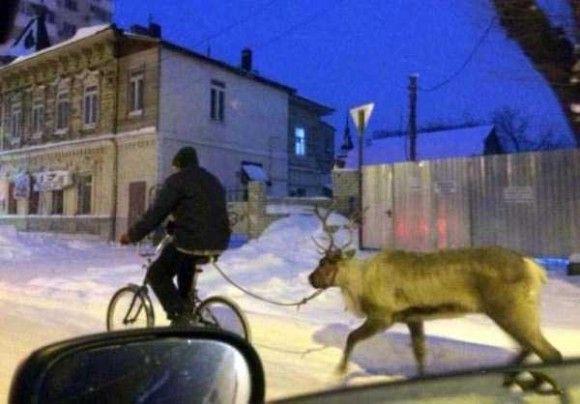 ロシアの日常9
