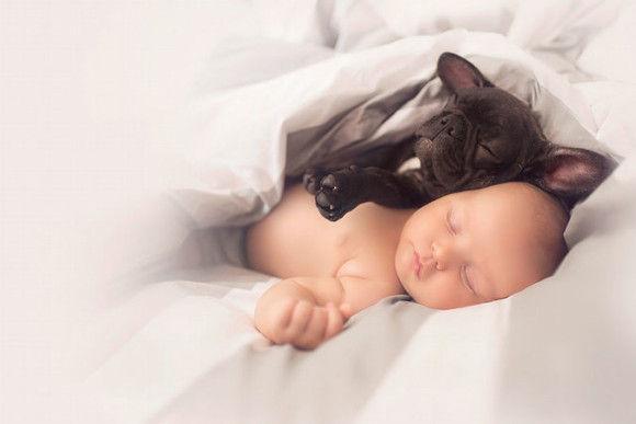 同じ日に生まれた犬と赤ちゃん6