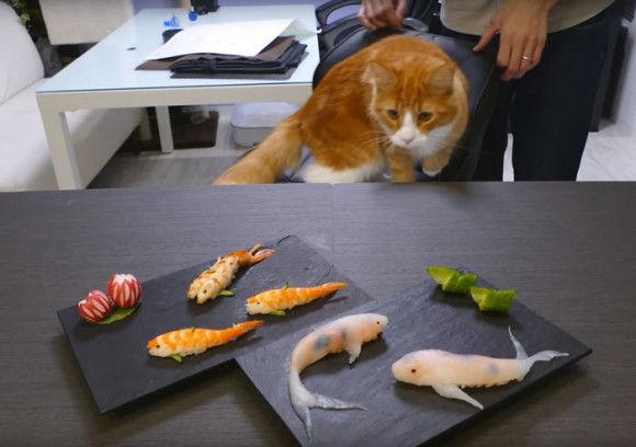 リアルな寿司15