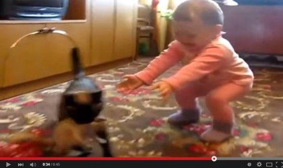 赤ちゃんから子猫を取り返そうとする親猫5