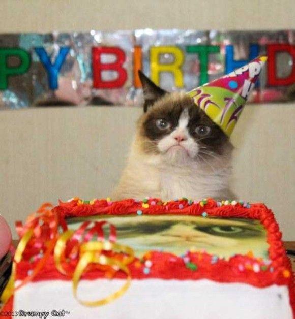 誕生日を祝ってくれるペット画像8