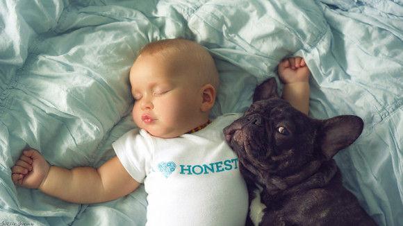 同じ日に生まれた犬と赤ちゃん3