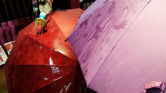 海外で日本の傘が話題1