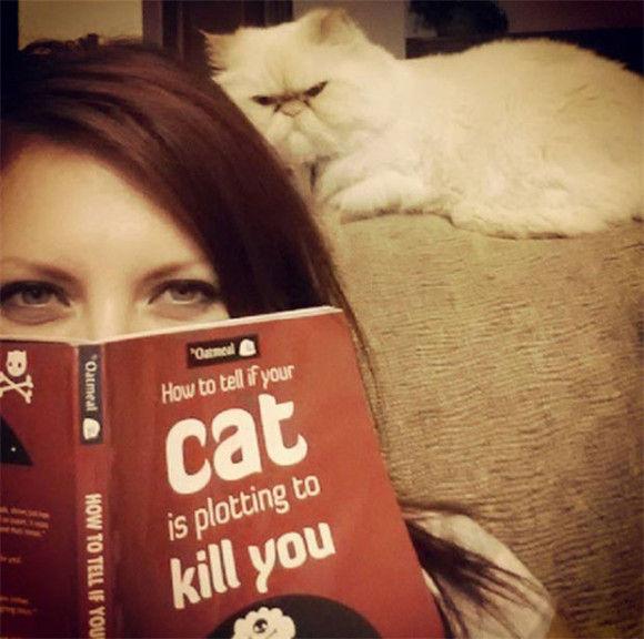 ネコに狙われている4