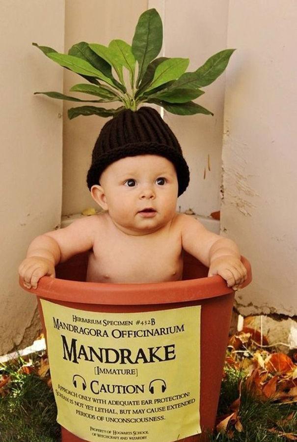 1ハロウィン赤ちゃん仮装8