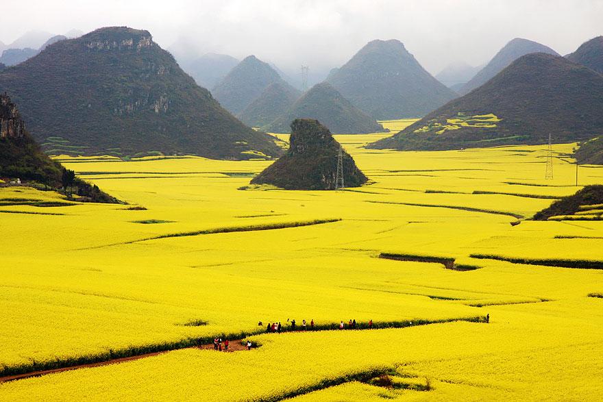 中国の画像26