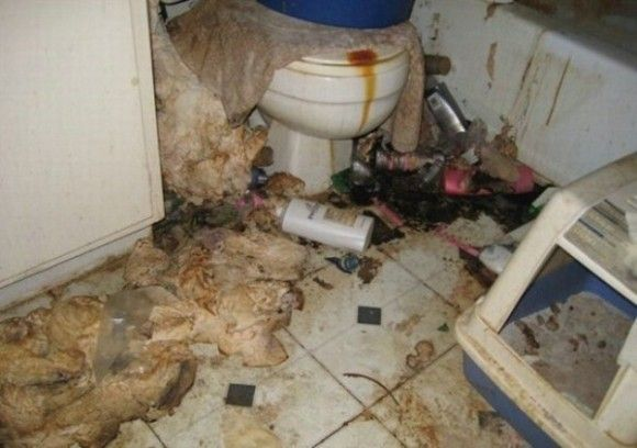 汚すぎる部屋5