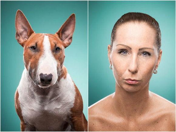 犬と飼い主6