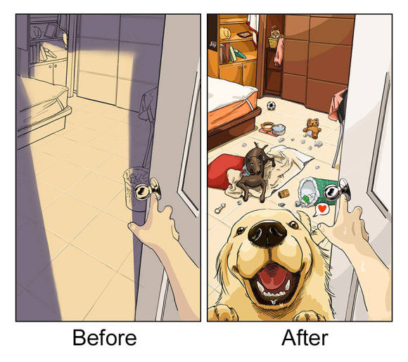 愛犬を飼い始めた後と前3