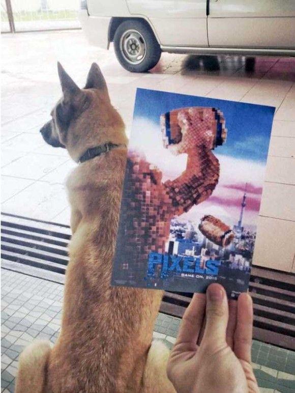 映画のポスターとシンクロ16