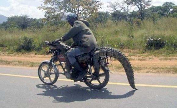 アフリカの日常光景32
