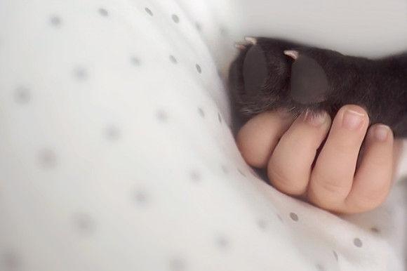 同じ日に生まれた犬と赤ちゃん9