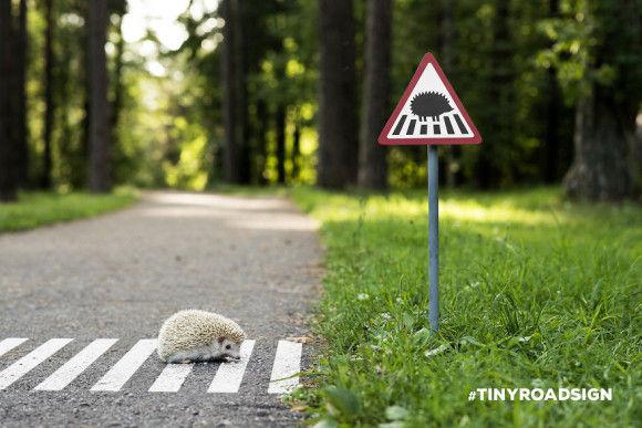 動物の標識がおもしろい1