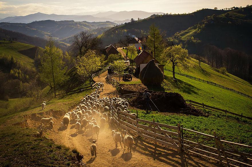 ルーマニアの大自然19