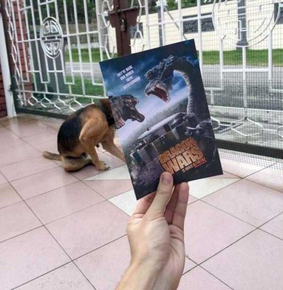 映画のポスターとシンクロ2