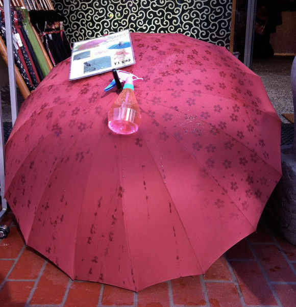 海外で日本の傘が話題4