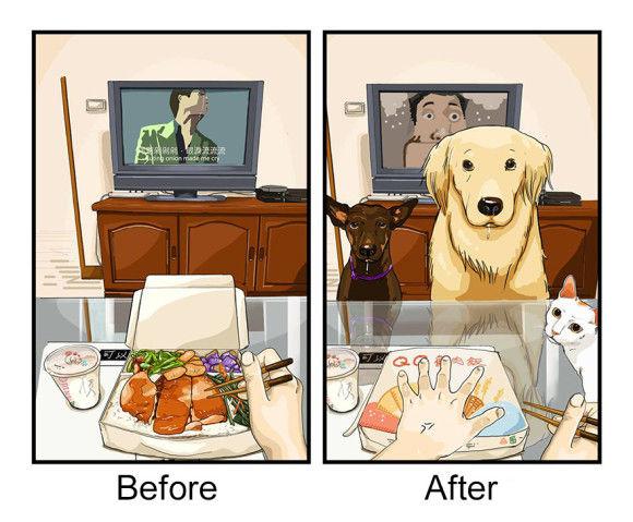 愛犬を飼い始めた後と前1
